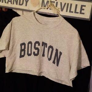 Brandy Melville Boston Cropped Soroya top